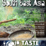 Taste the World event poster for Boulevard Restaurant made by Jay Gervais